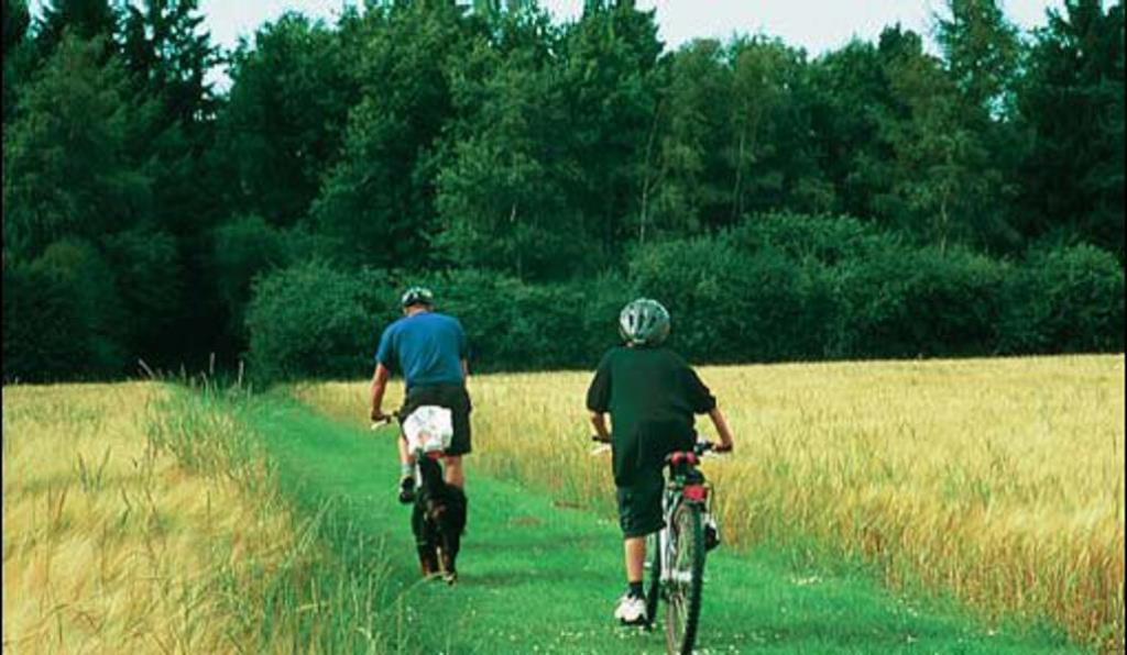 cykelferie-camping-sindal