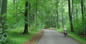 Sindal Camping - Funen