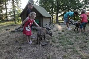 Sindal Camping - Hyggelig familie